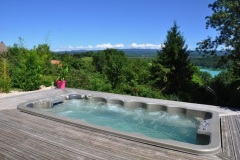 Vente de spas de nage a Geneve